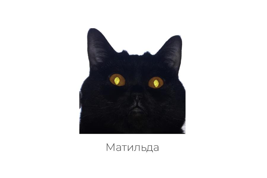 August August J заспівали про Матильду — UA MUSIC | Енциклопедія української музики
